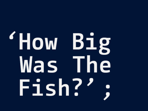 How Big Was The Fish? - Interface Blockseminar